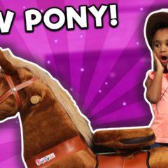 SAMIA GETS A PONY!! 🐴 4